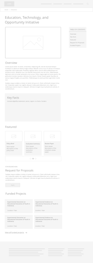 Low-fidelity wireframe: Initiative page